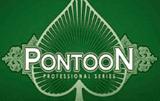 Онлайн-игра Понтун Профессиональная Серия